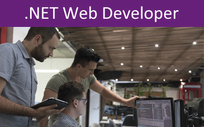 .NET Web Developer